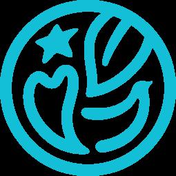 CI Symbol Type